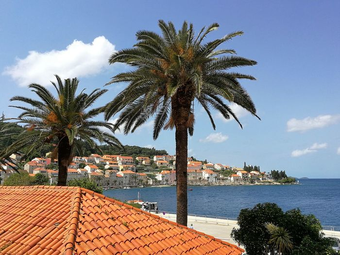Harbour Architecture Bay Blue Sky Palm Tree Port Roof Roof Tile Sea Town Water Waterfront