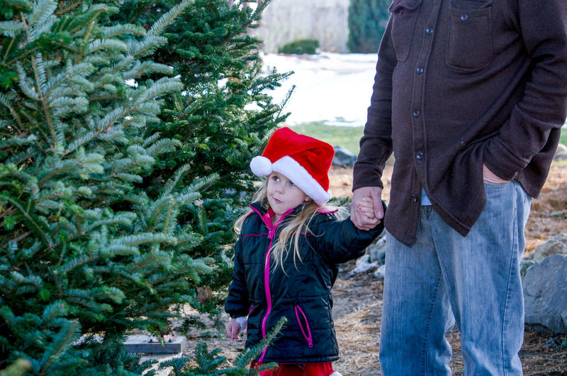 Midsection of father holding hand of cute daughter during christmas
