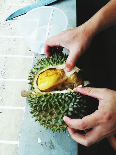 Cropped hands holding durian
