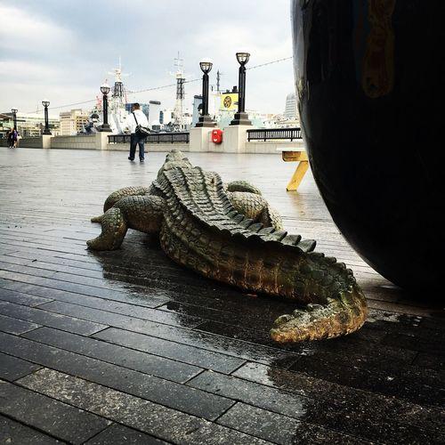 Aligator London More London London Riviera Thames Scoop HMS Belfast June Summer Run For Your Life Walking To Work Morning Sky