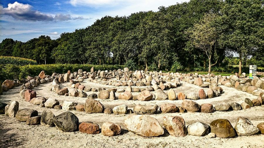 Stones Arranged In Circles On Field In Forest