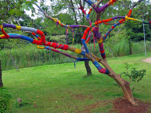 Art Colorful Day Grass Multi Colored Nature No People Outdoors Park Tree Yarn Yarn Bombing Art Is Everywhere