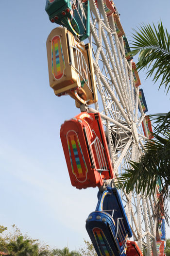Amusementpark Blue Day Ferris Wheel Growth Low Angle View Multi Colored Nature Outdoors Park Sky Tree