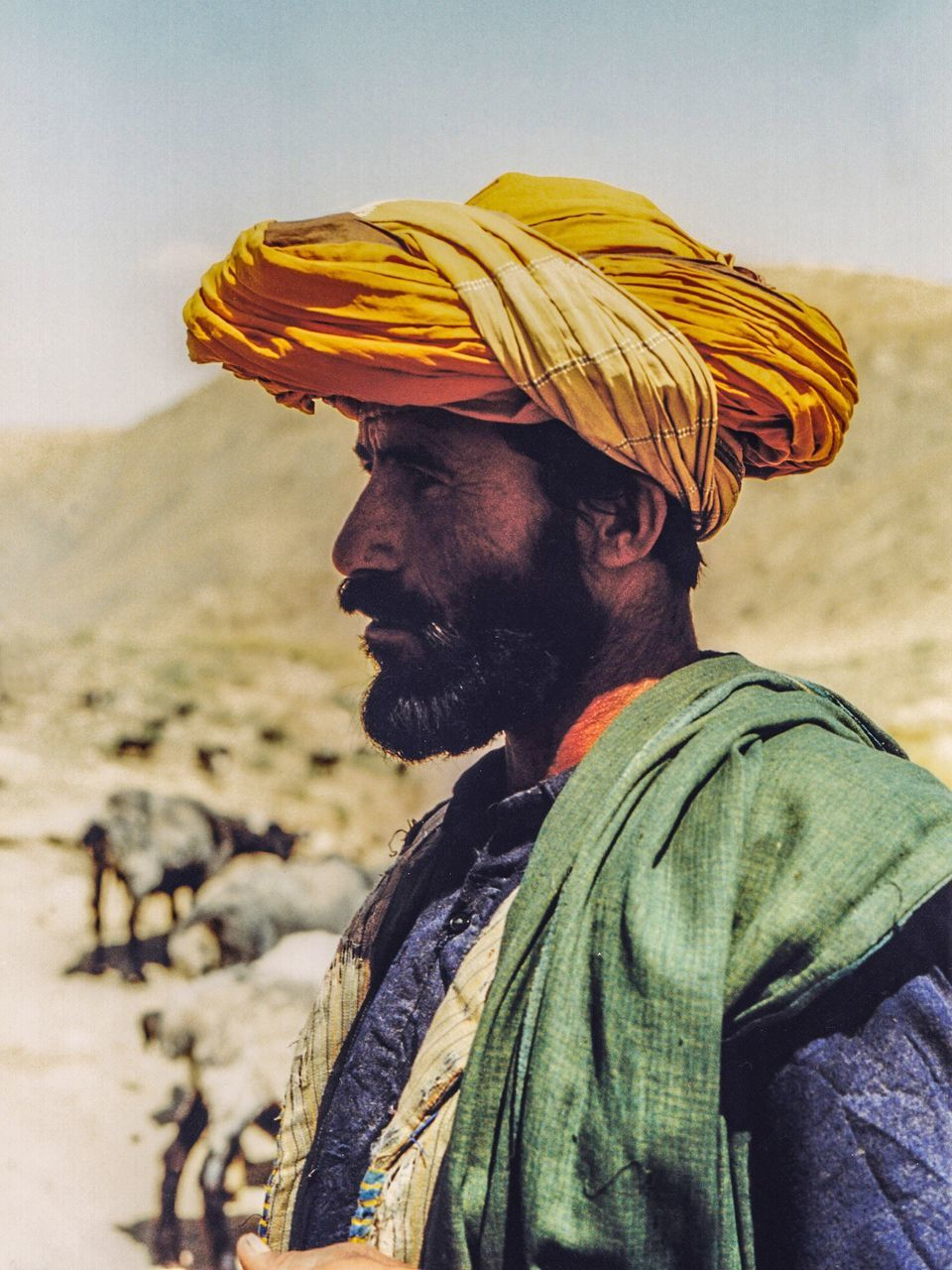 real people, one person, side view, one animal, outdoors, mammal, domestic animals, turban, day, men, standing, nature, one man only, sky, people