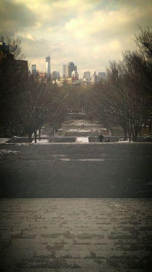 Enjoying The View Brooklyn NYC Skyline