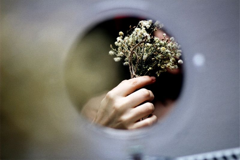 Cropped hand of woman holding flower reflecting on mirror