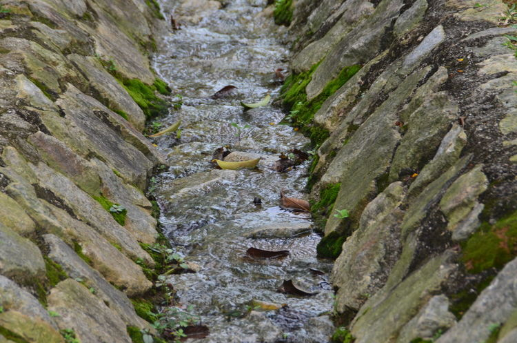 Architecture Beauty In Nature Close-up Day Moss Nature No People Outdoor Photography Outdoors Park Rock Water Water Flow