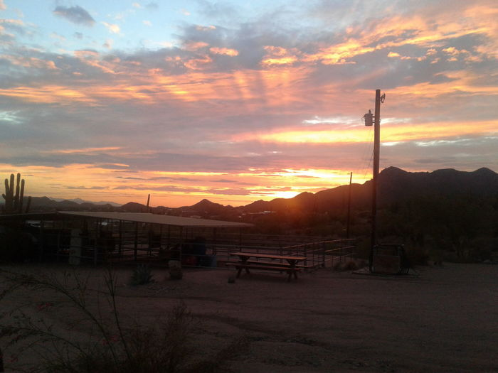 Arizona sunset... EyeEmNewHere Ray Desert Arizona Apache Junction Tree Sunset Sky Cloud - Sky Landscape Telephone Pole Dramatic Sky Silhouette Orange Color Sun