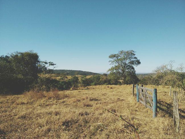 Follow the horizon. Farm Life Tranquility Safety