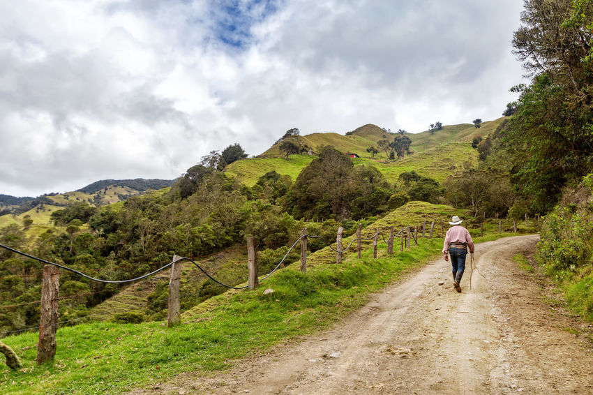 A lone cowboy walks up the road in the mountains outside of Salento, Colombia. Cloud Colombia Farm Hiking Palm Pasture Quindío Rural Tree Trip Andean Cauca Colombian  Countryside Forest Hike Jeep Landscape One Person Outdoors Quindío Salento Tolima Trek Wax
