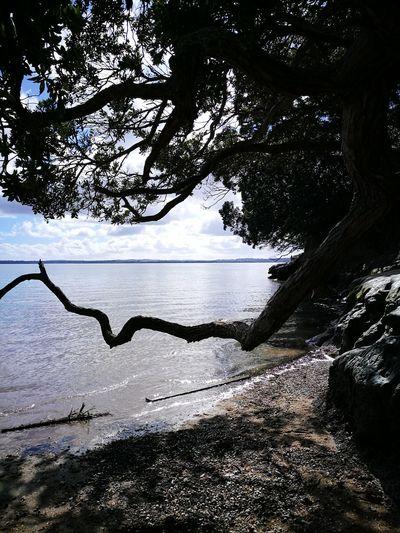 Water Seascape