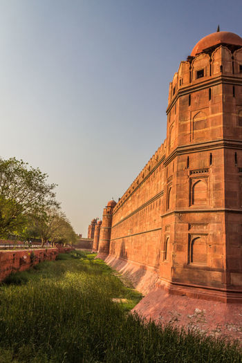 The Red fort of Delhi in India Red Fort Delhi Delhi India Sky Architecture Plant Grass Built Structure Nature The Past History Clear Sky Travel Destinations Building Exterior No People Day Tourism Ancient Travel Tree Old Outdoors Building Ancient Civilization Archaeology