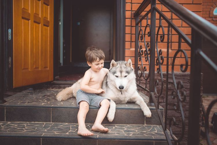 Canine Child Childhood Dog Domestic Domestic Animals Full Length Innocence Leisure Activity Lifestyles Mammal One Animal One Person Pet Owner Pets Portrait Real People Sitting Vertebrate