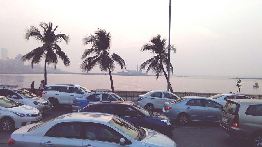 EyeEm Selects Car Palm Tree Tree Beach Transportation Sea Outdoors Sky Day