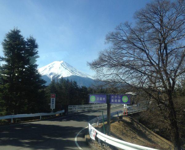 My best memories. Tree Road Outdoors Day Snowing Fujimountain Japan Japan Photography Kawaguchiko