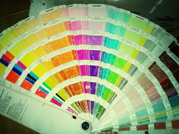 tabela pantone é como minha vida, colorida!!! . Design Designer  Vetor