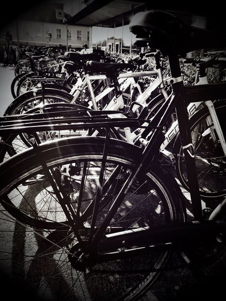 Bicycle Mode Of Transport Transportation Land Vehicle Wheel Stationary No People Outdoors Sunny Sunbeam Sunlight Bikes Bycicle Bycicles Bycicle Photography Blackandwhite Black And White Black & White Blackandwhite Photography Black And White Photography Denmark Bycicle Parking Shotoniphone7 Bicycles Bicycle Parking