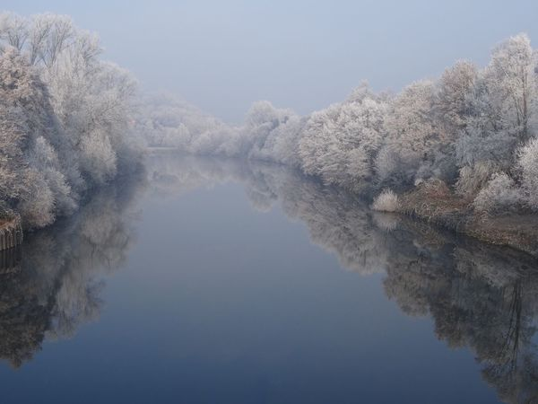 Nature Reflection Beauty In Nature Winter Water Tranquil Scene Scenics Tree Snow Outdoors Lake New Year No People Cold Temperature Mirror White Frost Neckar River Winter Wonderland Beauty In Nature Symmetry Germany Frost EyeEmNewHere Perspectives On Nature