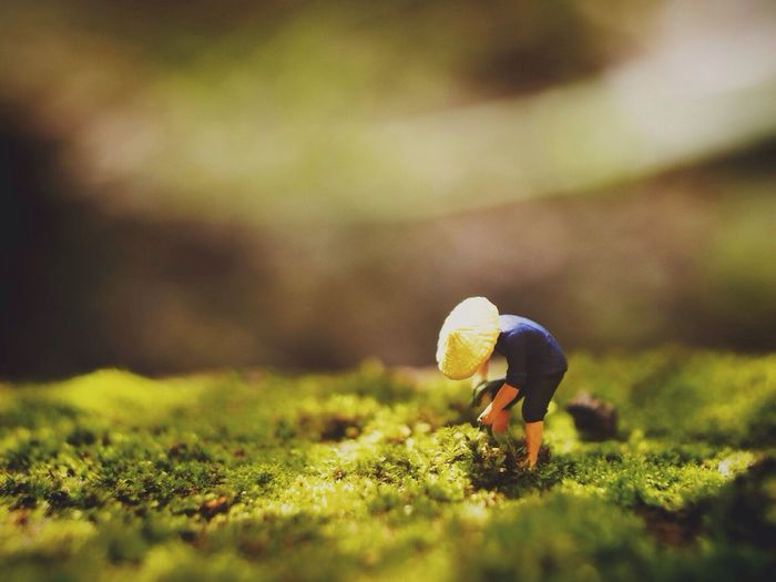 Tilt-shift image of farmer working on field