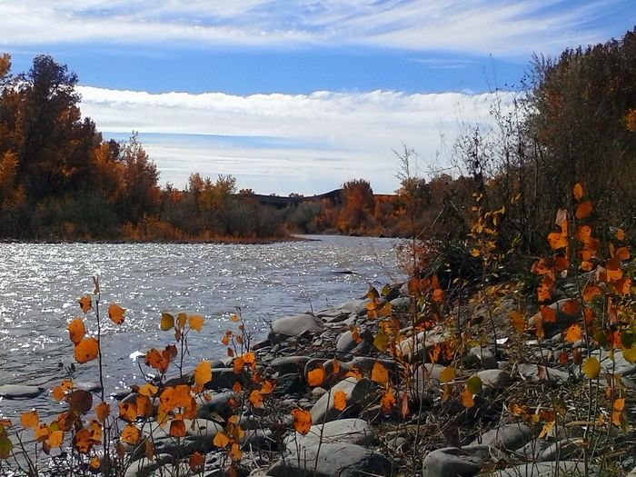 North Fork,Gunnison River in Hotchkiss, CO Water_collection Colors Of Autumn