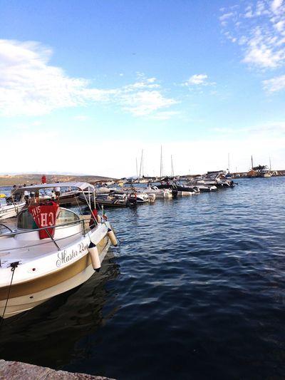 Harbour Harbour