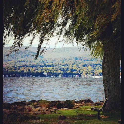 Solitude...or Loneliness? AspiringPhotographer Nikonphotography Nikon Nikon_photography Nikonshots Nikontop Nature Beautiful Crotononhudson Fall Newyorkl Solitude Loneliness Instagood