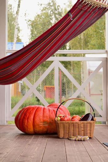 Close-up of pumpkins in basket on table