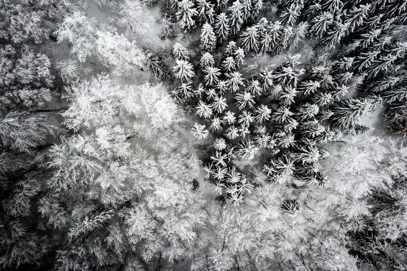 Beskydy Winter