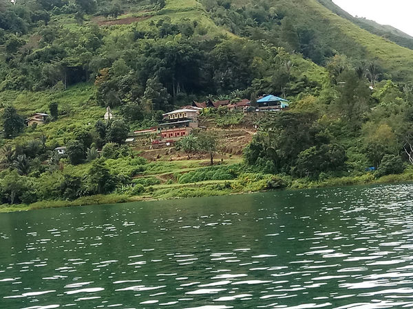 beauty in nature Beauty In Nature Day Green Color Growth Lake Mountain Nature Outdoors Plant Scenics - Nature Tree Water Waterfront