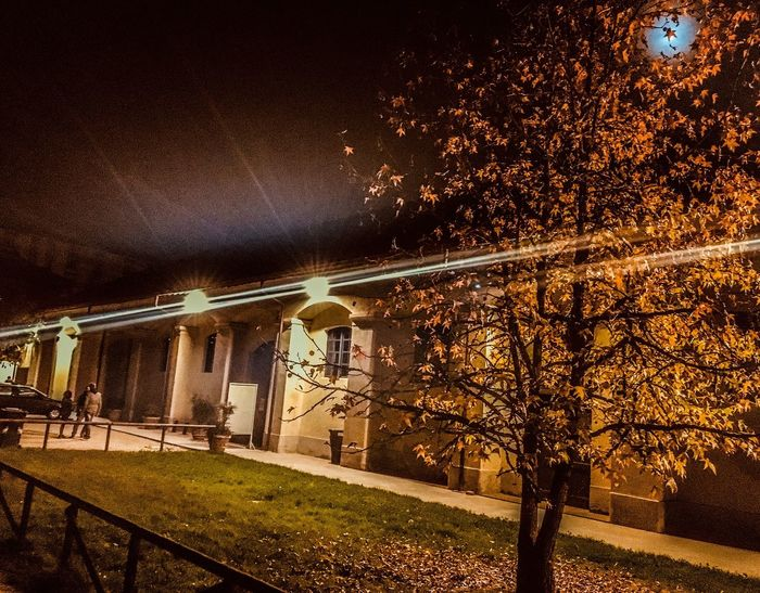 Tree Autumn Railing Built Structure Architecture Outdoors Nature Illuminated No People Leaf Night Building Exterior Beauty In Nature Sky Italy