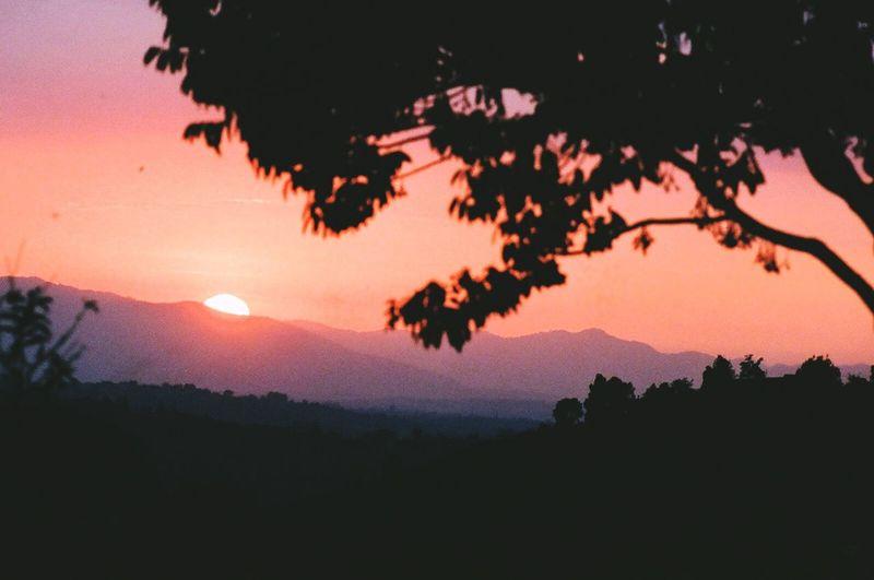 Sun set Nature