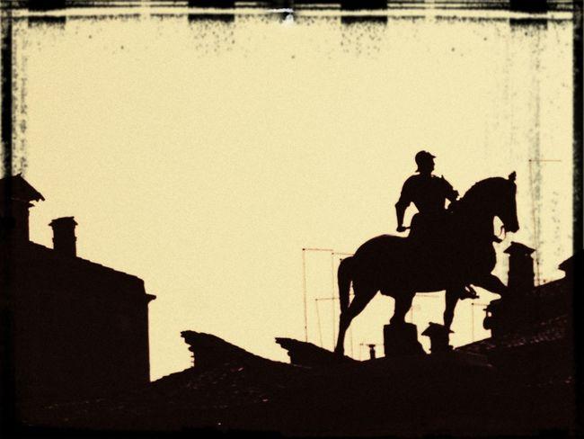 Cavallo e cavaliere tra i tetti di Venezia Venice, Italy