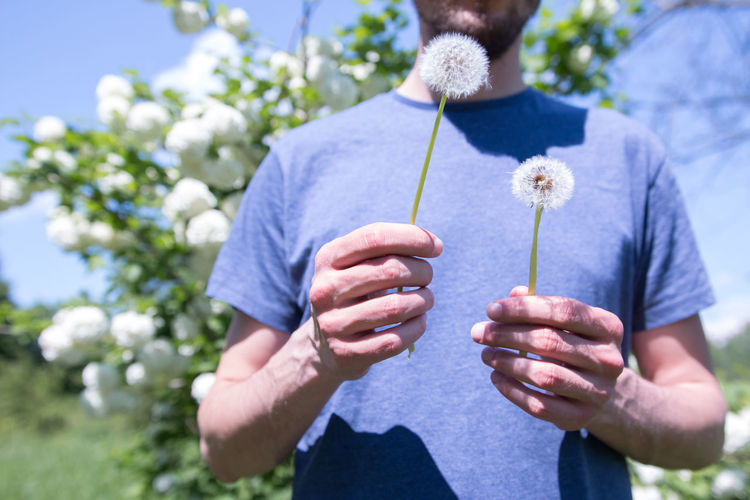 Midsection Of Man Holding Dandelion Seed