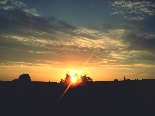 Sunshine Morning