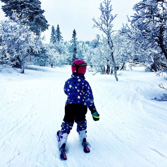 Winter Snow Cold Temperature Childhood Tree One Person Nature Skiing 🎿 Alpine Leisure Activity Outdoors Sweden Nature