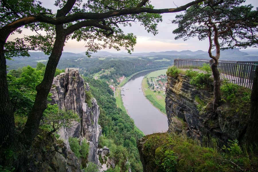 Tree River Scenics Mountain Travel Destinations Rock - Object Nature Water Landscape Beauty In Nature Waterfall Fog Bridge - Man Made Structure Outdoors No People Cliff Panoramic Forest Day Architecture Bastei Saxon Switzerland Elbe Sandstone Mountains Elbe River