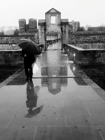 Reflection Rain