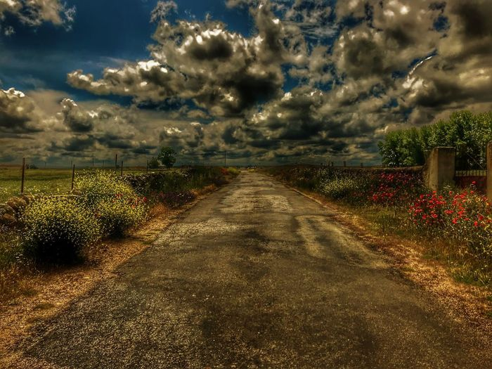 Destiny Dramatic Sky EyeEm Best Shots EyeEmNewHere HDR Hdr_Collection Path Beauty In Nature Blooming Blossom Cloud - Sky Day Destination Diminishing Perspective Direction Dramatic Landscape Fate  Field First Eyeem Photo Growth Idyllic Land Landscape Mindfulness Nature No People Outdoors Pathway Plant Poppy Road Rural Road Rural Roads Sky Spring Springtime The Way Forward Trail Tranquil Scene Tranquility Transportation Tree vanishing point Way