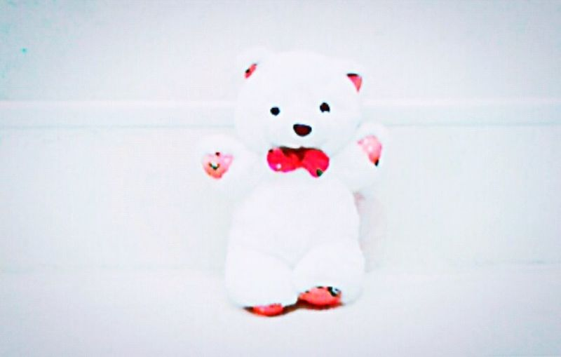 Teddy Bear Red And White Calming No People Quiet Moments So Quite ....❤♥