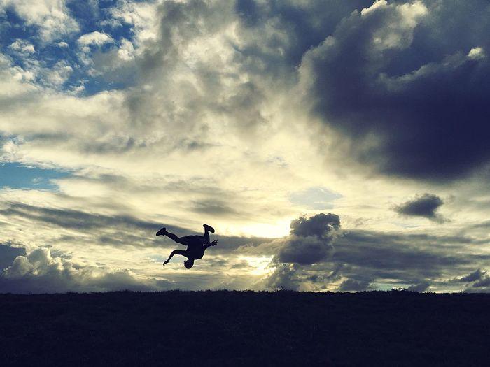 Silhouette of bird flying against sky