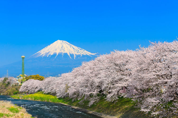 Mount fuji against clear blue sky