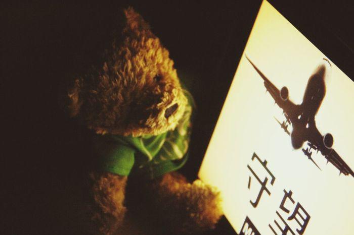 Waiting MH370 Come Back Teddy Bear