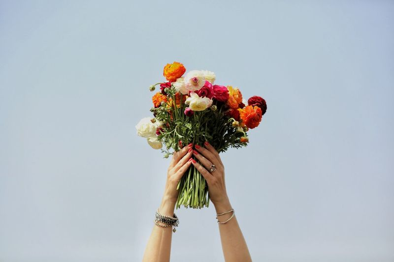 Cropped Hands Holding Bunch Of Flowers Against Sky