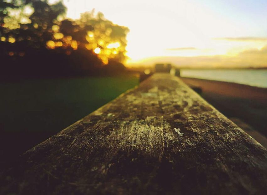 Close-up Dusk Sunset Selective Focus Close-up Dusk Sunset Selective Focus Textured  Plank Focus On Foreground Sky Wooden Surface Level Diminishing Perspective Tranquil Scene Nature Non-urban Scene Extreme Close-up Scenics Tranquility Botany No People