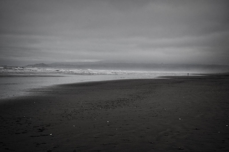 Alone Arcada California Foggy Day ! Beach Beauty In Nature Cloud - Sky Coast Line  Day Horizon Over Water Landscape Lonely Tree Low Tide Nature No People Outdoors Sand Scenics Sea Shore Sky Tranquil Scene Tranquility Vacations Water Wave