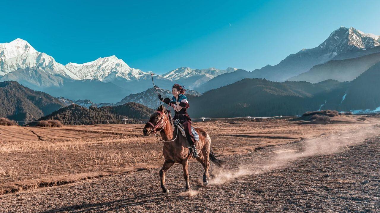 HORSE RIDING HORSES ON MOUNTAIN