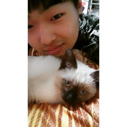 냐옹이와 셀카 일상 고양이 고냥이 냥스타그램 cat me my selfie 셀카 맞팔 선팔 follow followback