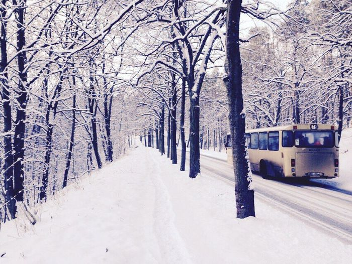 Berlin Im Winter Schnee City Winterwunderland Beautiful Photo Followme