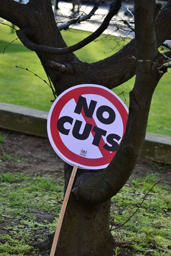 """""""NO CUTS"""" sign propped against a tree Beauty In Nature Branch Close-up Communication Day Green Color Growth Guidance Nature No Cuts No People Outdoors Road Sign Text Tree Tree Trunk Warning Sign"""