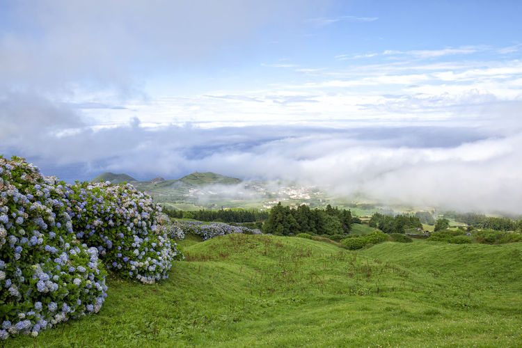 Early morning clouds above the small village of Varzea in Sao Miguel. Sao Miguel Azores Açores Sete Cidades Hike Trek Trail Landscape Caldera Crater Lagoa Azul Verde Seca Alferes Flowers Hydrangea Ginetes Varzea Clouds Fog Travel Tourism Destination